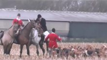 'Not enough evidence' to prosecute Warwickshire fox hunt members despite video footage