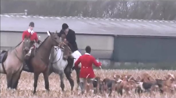 Still from video of Atherstone Hunt with body of dead fox