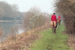 Yorkshire Hunt members charged with Hunting & Badger Act offences