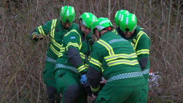 Crews used a specialist board to rescue one of the monitors from a thicket of brambles
