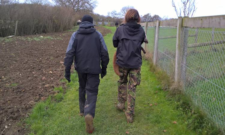 Belvoir Hunt: Hunt saboteurs removed one of the dead foxes
