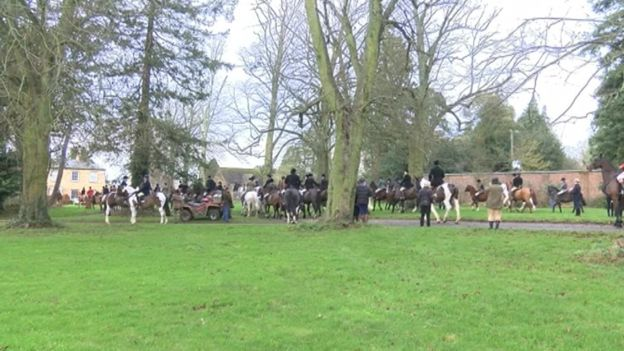 The fox was found captive three days before the Belvoir Hunt were due to meet in December 2015