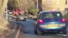 Braes of Derwent Hunt hounds run into the path of traffic in County Durham