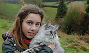 Cat hunted by Ross Harrier hounds