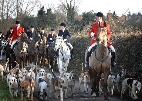 Essex and Suffolk Hunt