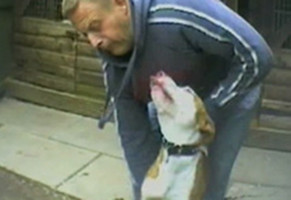 Gary Adamson dog fighting
