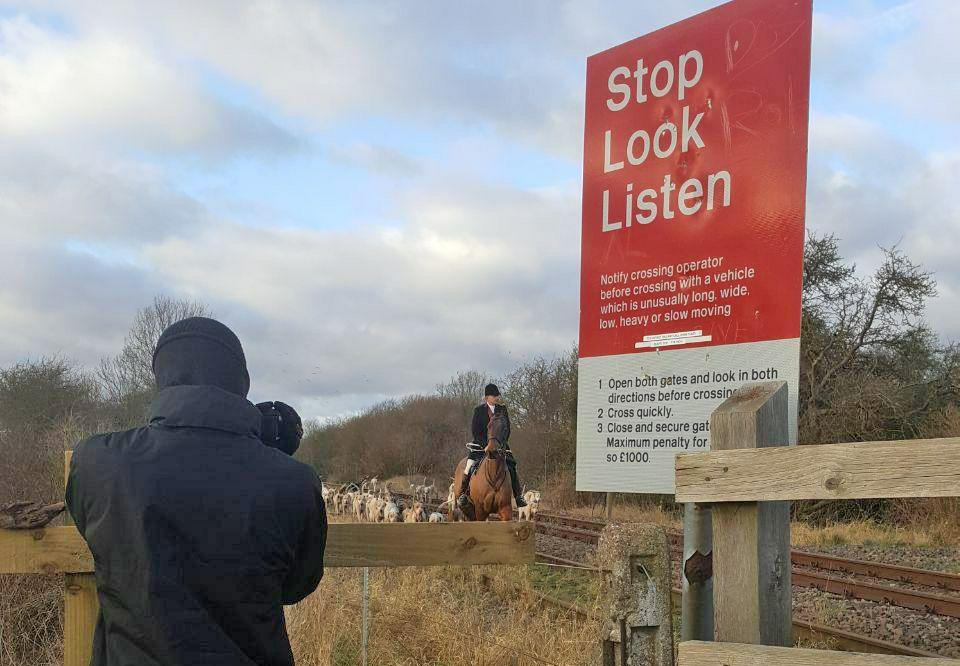 Grove and Rufford huntsman and hounds were seen on the line