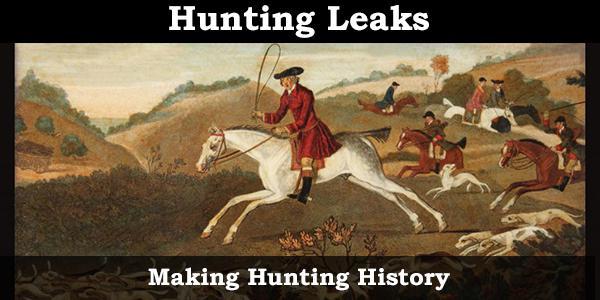 Hunting Leaks