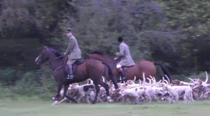 Meynell and South Staffordshire Hunt