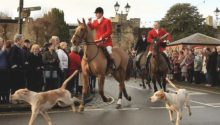 Hunt hounds chase fox into Shropshire housing estate