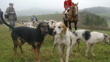 """National Trust writes to Portman Hunt about """"out of control"""" hounds"""