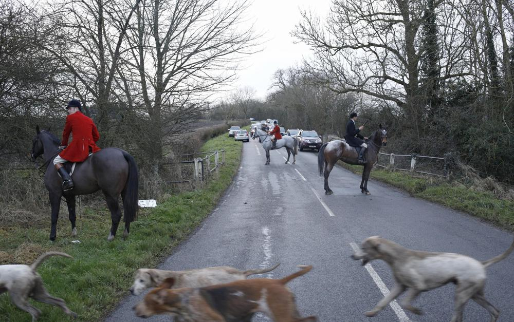 Quorn Hunt Hounds invade funeral service