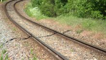 Seven dogs killed on railway line during 'drag hunt'