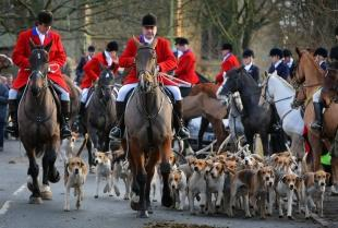 Huntsman denies claim that bagged foxes were used in County Durham