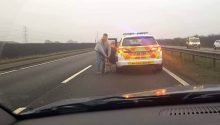 Hound dies after New Year's Day hunt spills onto dual carriageway