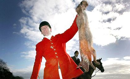 Violence and lies are the essence of fox-hunting in the UK