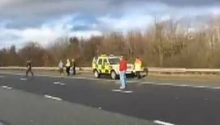 York and Ainsty North Hunt hound killed on A1