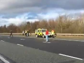Hound killed as York and Ainsty North Hunt cause traffic chaos