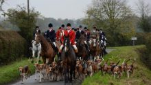 York and Ainsty South Hunt denies claims of illegal fox hunting